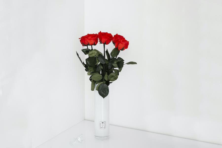 Langstielige Infinity Rosen in Vase