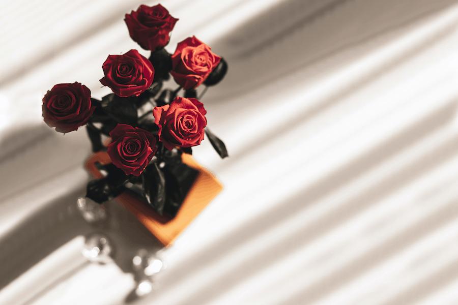 Langstielige Infinity Rosen mit Buch2