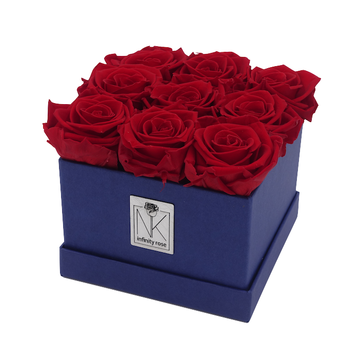 Rosenbox M / Blueberry-VibrantRed
