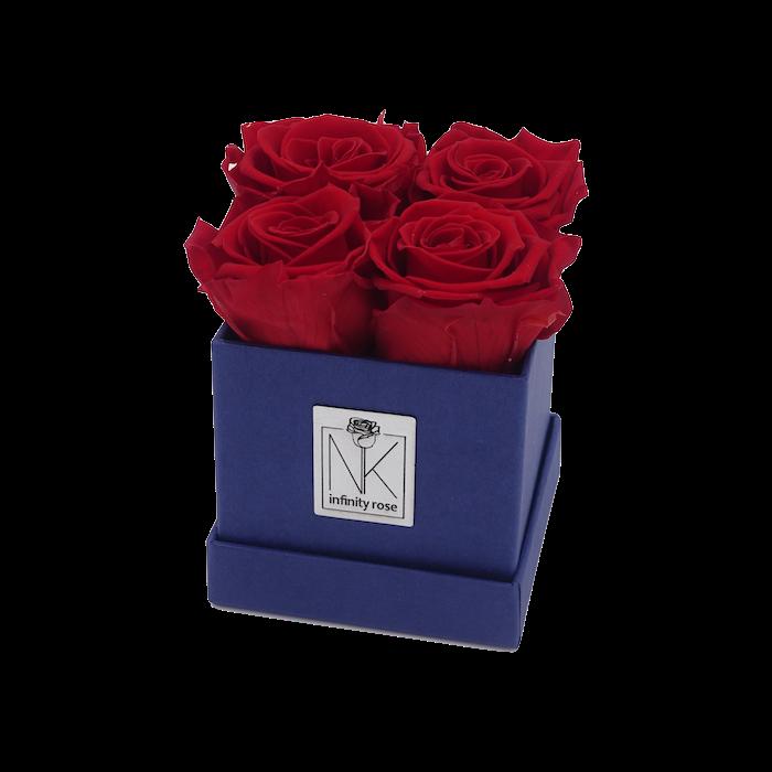 Rosenbox S / Blueberry-VibrantRed