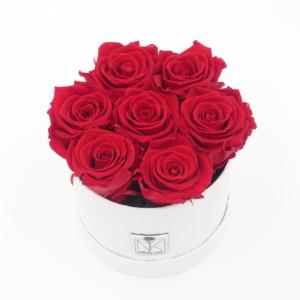 Vintage Flowerbox Vibrant Red 2