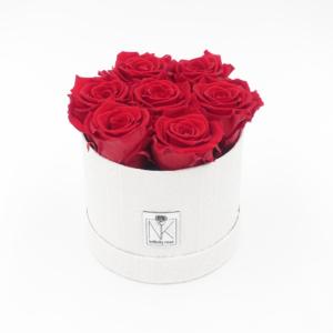 Vintage Flowerbox Vibrant Red