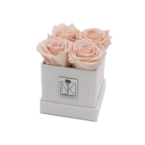 Rosenbox S / Weiß-Porcelain