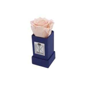 Rosenbox XS / Blueberry-Porcelain Pink