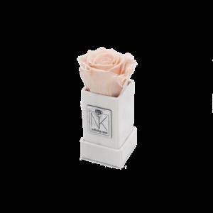 Rosenbox XS / Weiß-PorcelainPink