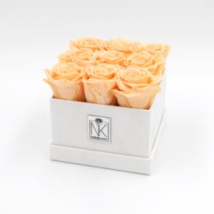 RosenboxM-Weiß-Peach