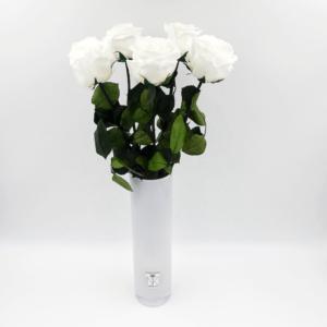 5 Langstielige Infinity Rosen in Vase Queen - Weiß