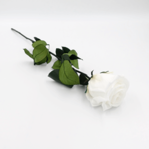 Langstielige Infinity Rose - Pure White